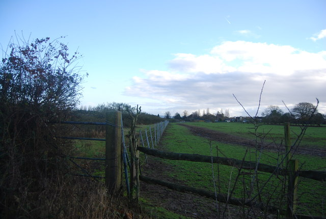 Fence by the bridleway