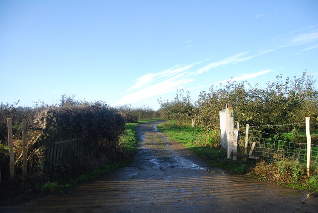 Track off the Bridleway