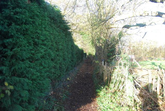 Bridleway to Wilsons Lane