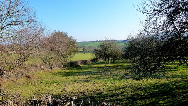 Old orchard by the A4112