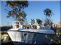 TQ2977 : Houseboat at Tideway Village : Week 5