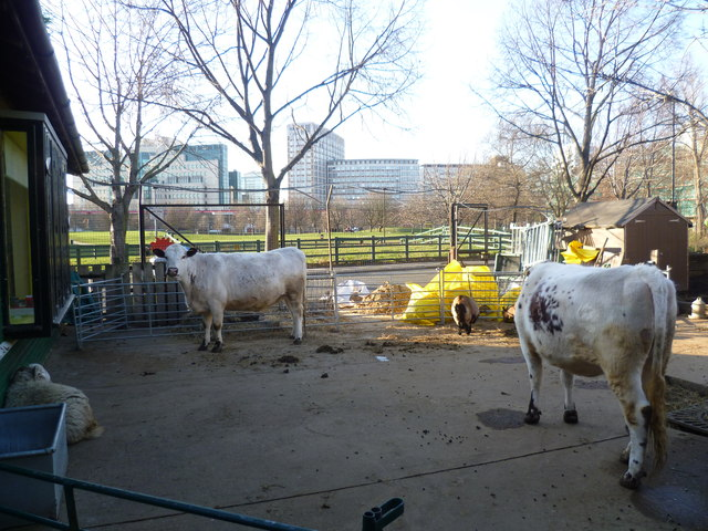 Inside Vauxhall City Farm