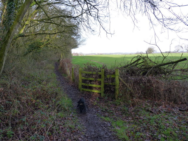 The footpath towards Coppice Farm