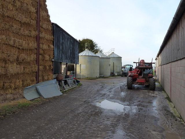 Barns and feed silos at Wood Hall farm