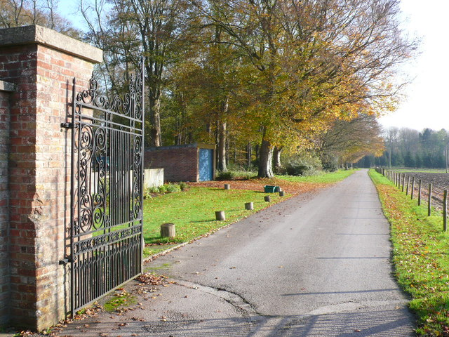 Driveway to Charborough Kennels