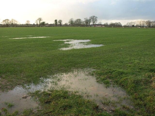 Wet field south of Smeatharpe Stadium