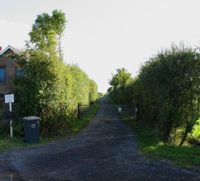 Driveway to Foxhill Farm