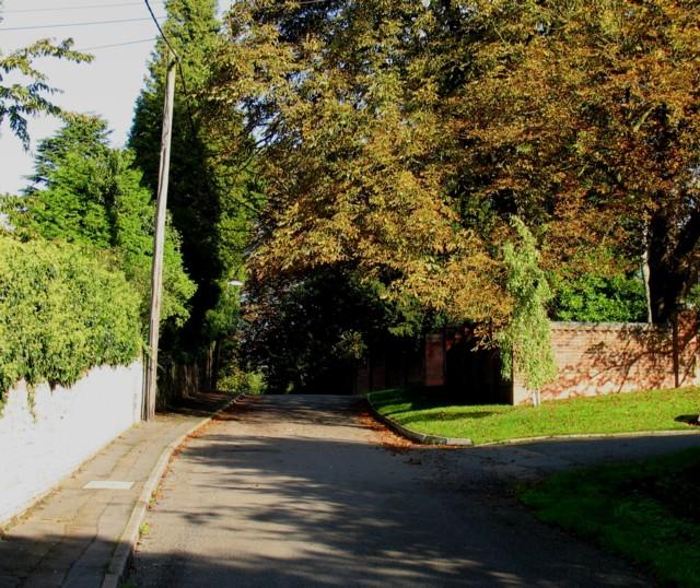 New Lane eastwards