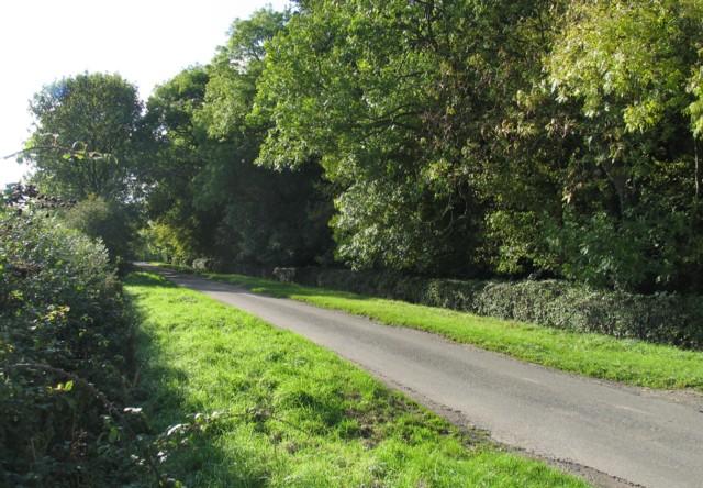 Six Hills Road passes Top Town Plantation