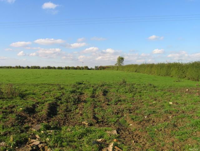 Field north of Six Hills Road