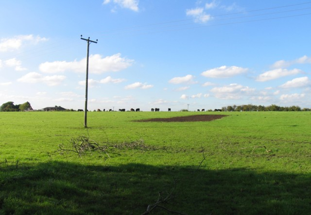 Fields north of Six Hills Road