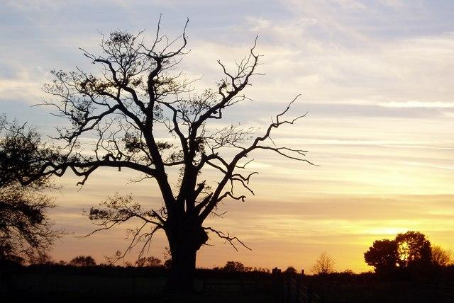 Sunset at Denham Castle, Suffolk
