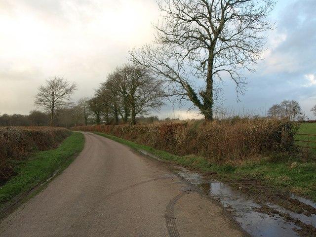 Lane to Jack's House
