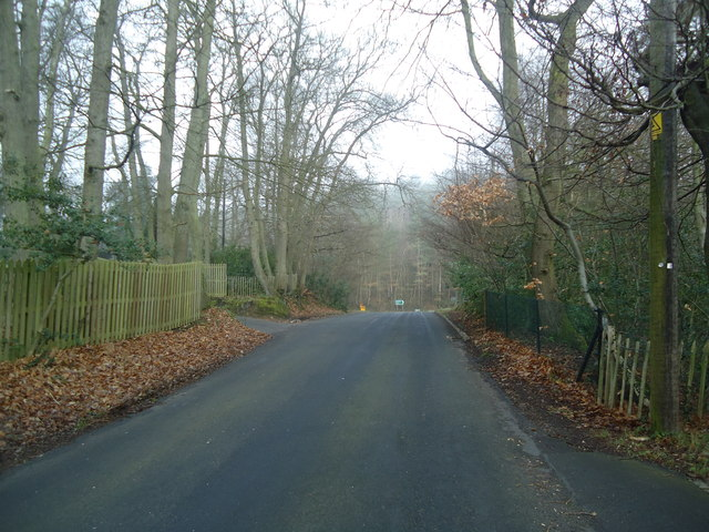 Coach Road, near Ivy Hatch