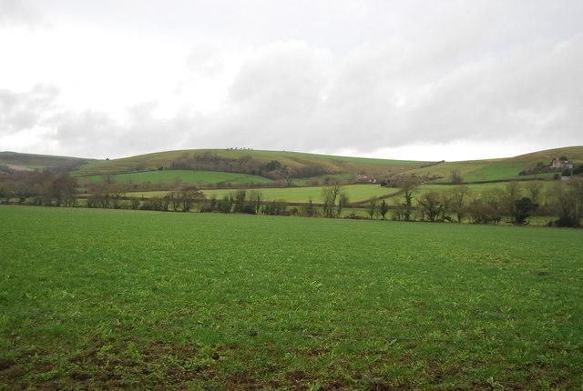 Farmland near Kingston Russell