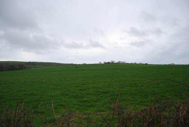 Farmland near Lower Kingston Russell Cottages