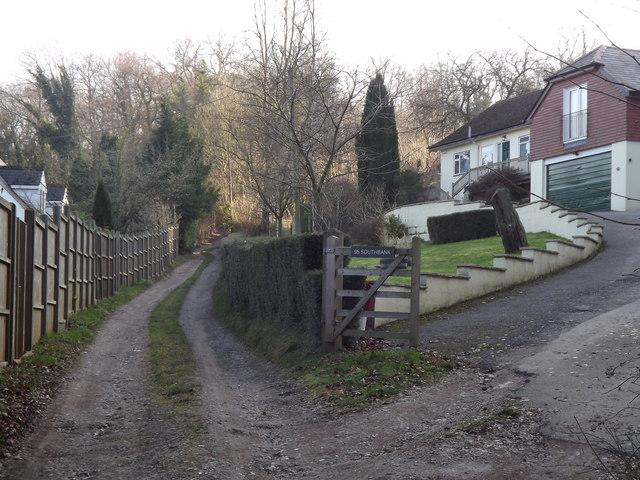 Beech, Off Medstead Road