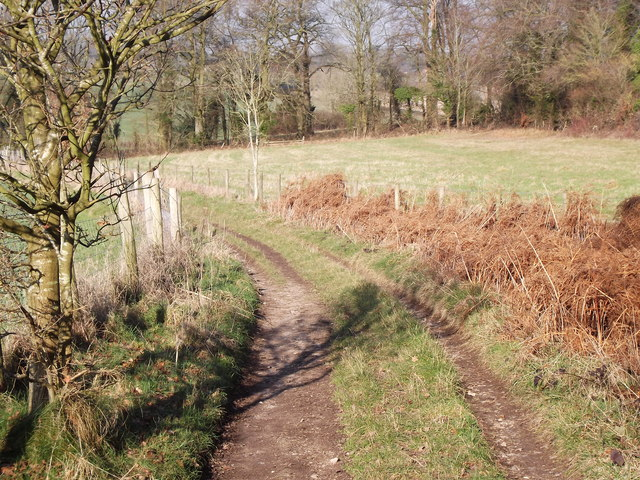 Tinker's Lane by Bentworth