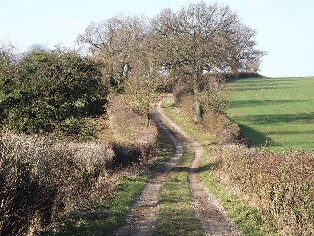 Winter on Tinker's Lane