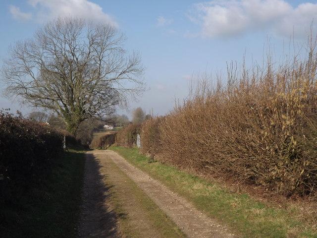 Tinker's Lane