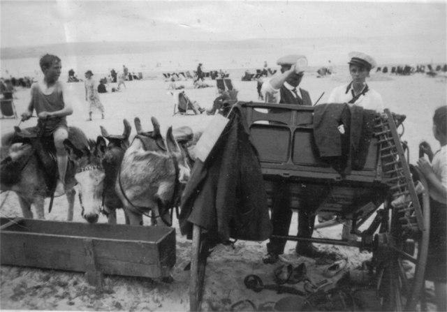 Weymouth beach, and donkey rides