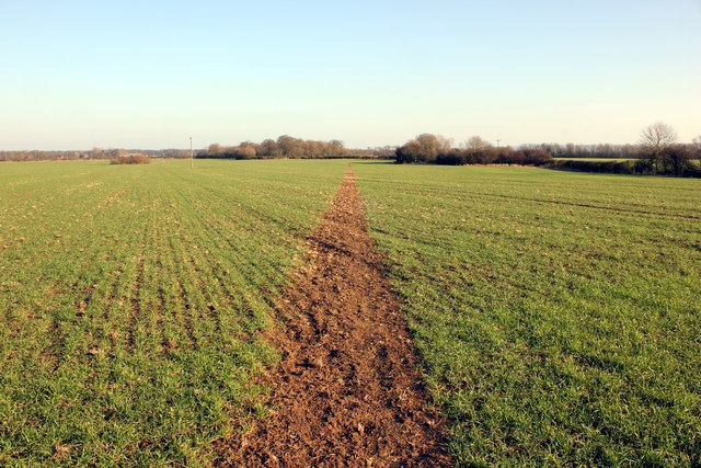 Footpath to Lea Newbold