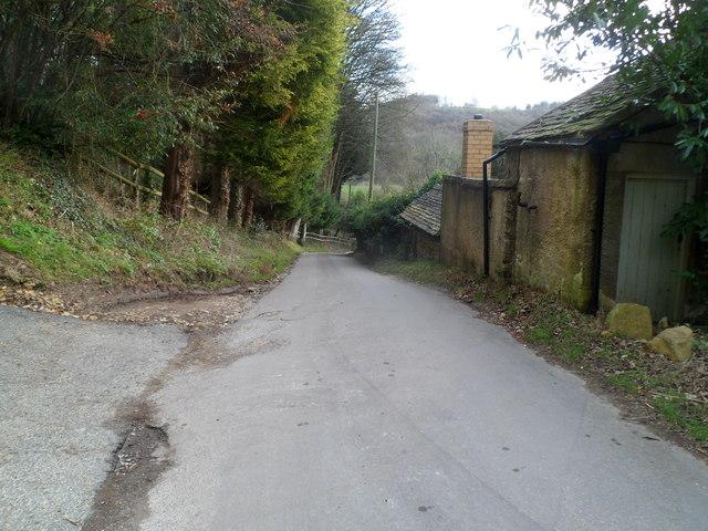 Steanbridge Lane descends into the Slad Valley
