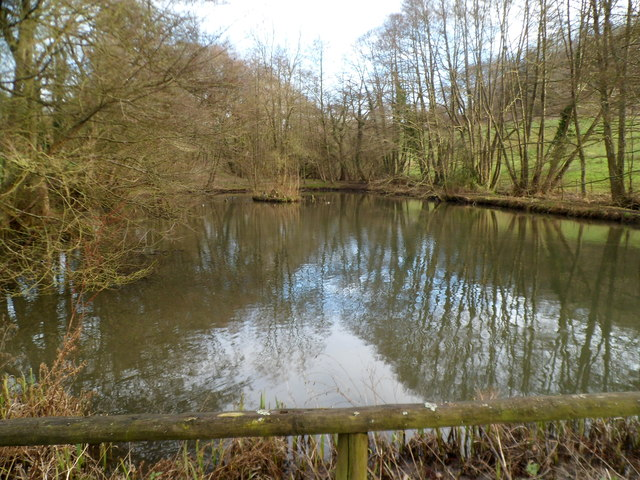 Pond between Steanbridge Court and  Steanbridge Mill, Slad