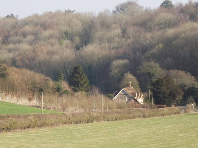 Downland East of Bentworth
