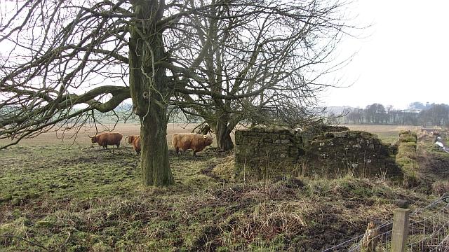 Ruin, Craigluscar