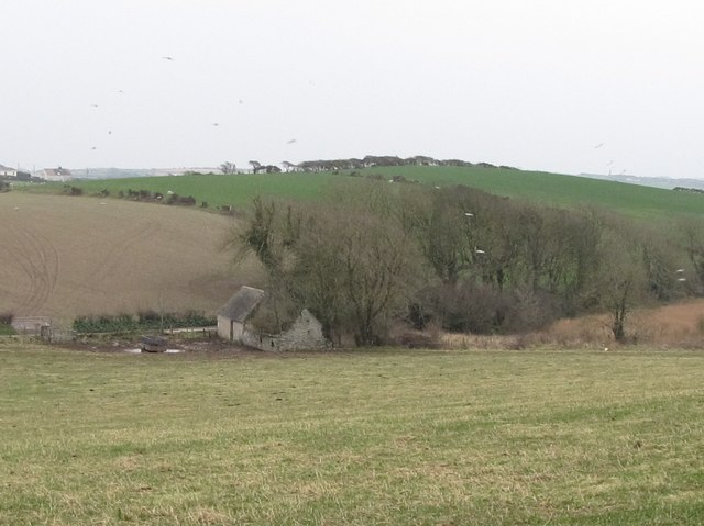 Ruined homestead on the Ballynoe Road