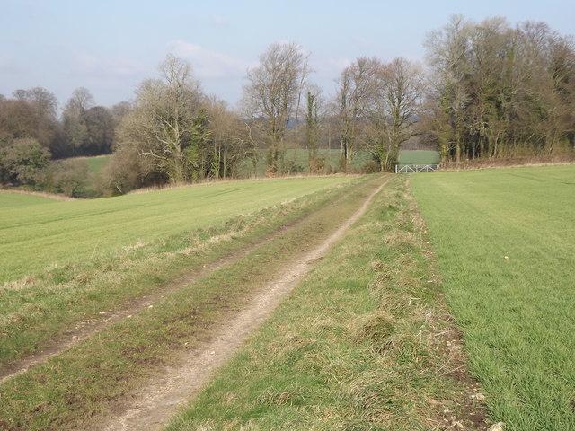 Bridleway by Thedden Grange