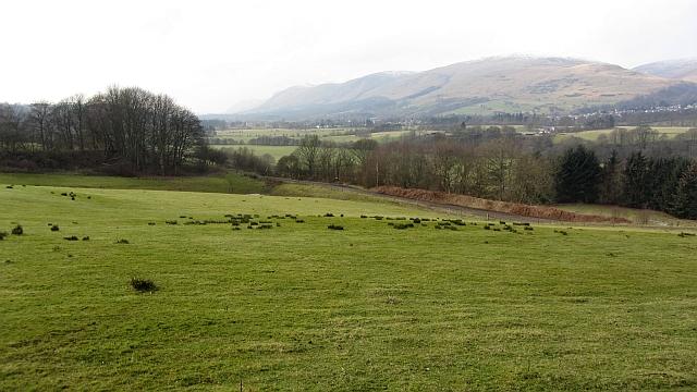 Pasture, Mains of Blairingone