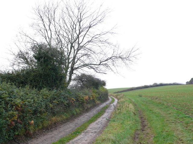 Track on Axen Brow