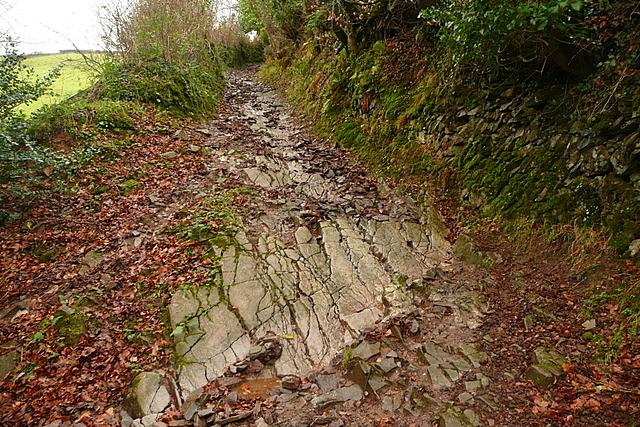 Bridleway to Lucott Farm