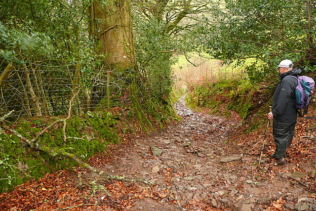 Bridleway to Tarr Ball