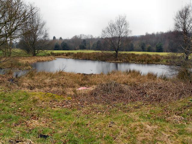 Pond in Regent Park