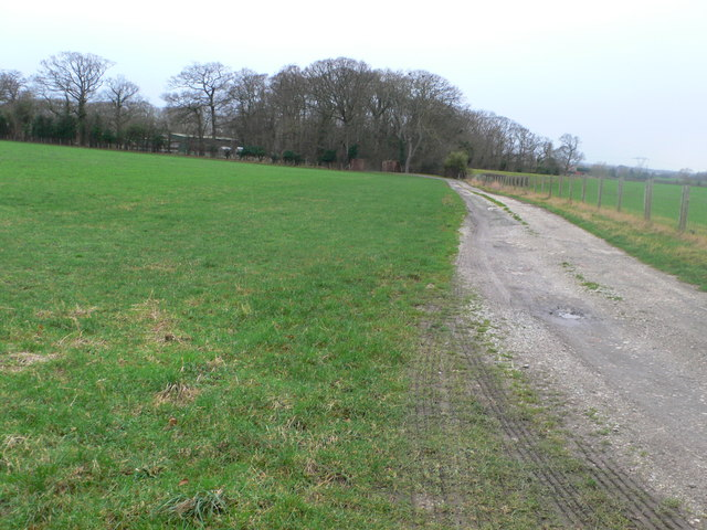 Track to Sarn Wood