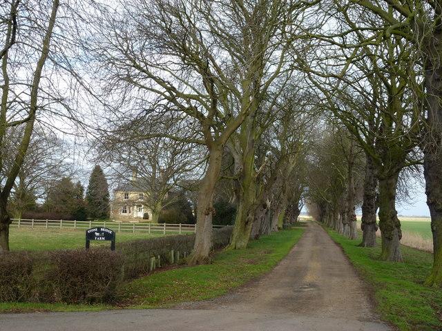 Stone Bridge Farm, Thorney Dyke
