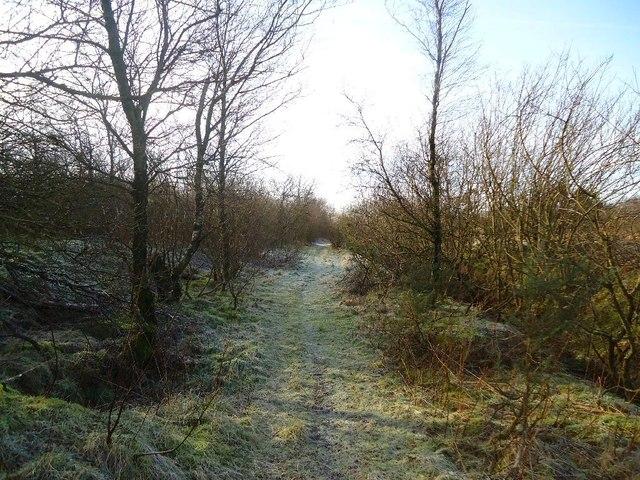 Arden Moss, Slamannan Railway