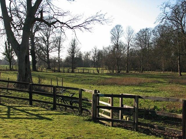 Kissing gate at Home Farm