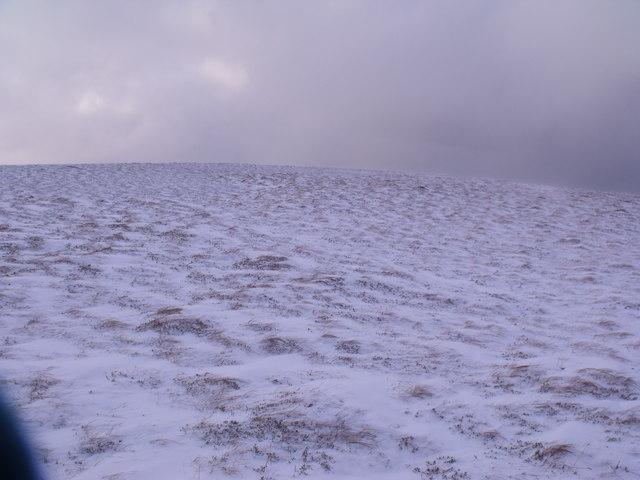Wind-swept ridge south-east of An Lurg near Glenmore