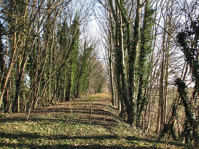 Trackbed of the Cambridge to Colchester railway