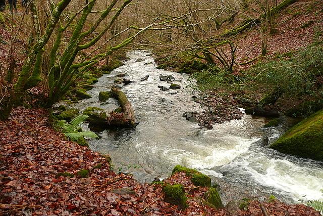 Alongside Horner Water