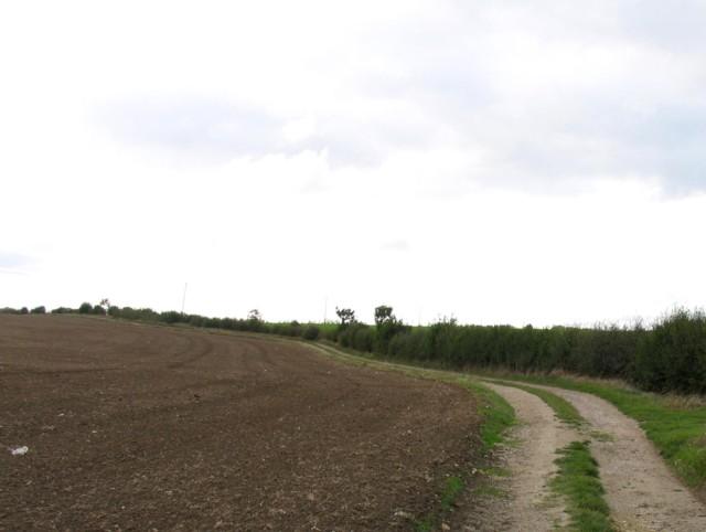 Track towards Asfordby Farm