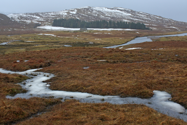 Boggy ground beside the River Spey