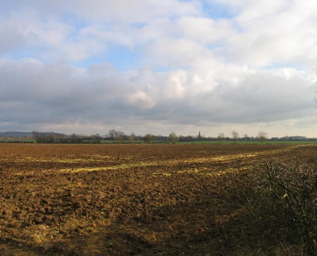 Towards Langham