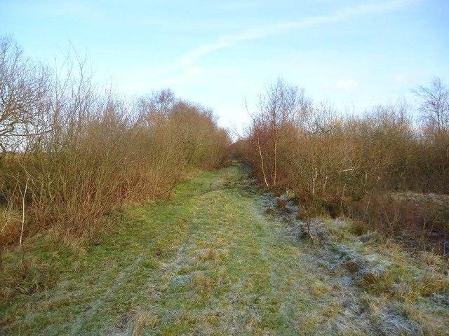 Arden Moss, Slamannan Railway [3]