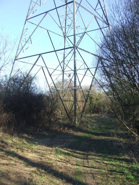 Through The Pylon