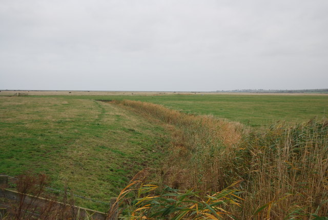 Drainage ditch, St Mary's Marshes
